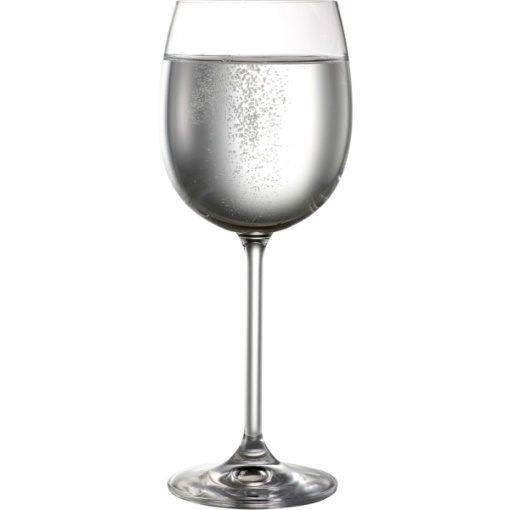 Bohemia Natalie White Wine Glasses