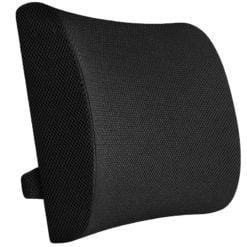 GreenLeaf Memory Foam Back Support Cushion